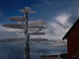 Frozen Signpost  Narvik  Nordland  Norway