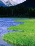 Vermillion Lakes  Banff National Park  Alberta  Canada