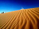 Sand Dunes  Monument Valley  USA