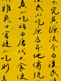 Calligraphy Script on Wall  Dongcheng  Beijing  China