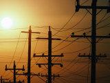 Power Lines at Dusk  Australia