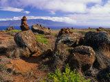 The Garden of the Gods  Lanai  Hawaii  USA