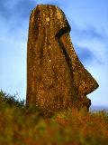 Moai Statue Lying Submerged in Soil  Rano Raraku  Easter Island  Valparaiso  Chile