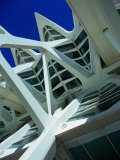 Detail of the City of Arts and Sciences Building  Valencia  Spain