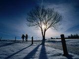 Couple Hiking on a Path with Winter Sun  Zurich  Switzerland