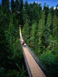 Capilano Suspension Bridge Crossing the Capilano River  Vancouver  British Columbia  Canada