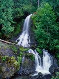 Cascading Waterfall Through Rainforest  Mt Rainier National Park  USA