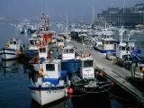 Fishing Boats in the Harbour  Concarneau  Brittany  France