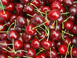Cherries  Ripponvale  near Cromwell  Central Otago  South Island  New Zealand