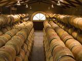 Oak Barrels in Wine Cellar at Groth Winery in Napa Valley  California  USA