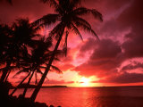 Palms And Sunset at Tumon Bay, Guam Papier Photo par Bill Bachmann