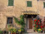 Old Home with Flowers at San Gimignano  Tuscany  Italy