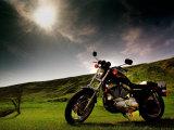 Harley Davidson Motorbike Sitting in Field  June 1998