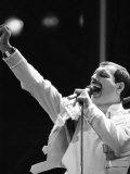 Queen Rock Group  Freddie Mercury  Queen in Concert at Wembley Stadium  London