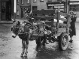 Small Boy Waits Patiently on a Donkey Cart in the Market Place at Kildare Co Kildare Ireland Papier Photo