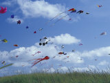 Kites Flying Along the Coastline  International Kite Festival  Long Beach  Washington  USA