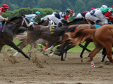 Race Horses in Action  Saratoga Springs  New York  USA