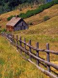 Barn on Last Dollar Road near Telluride  Colorado  USA