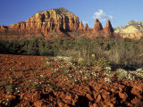 Red Rock Country  Sedona  Arizona  USA