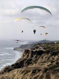 Paragliding  Torrey Pines  California  USA