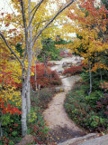 Penobscot Mountain Hiking Trails in Fall  Maine  USA