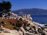 17-Mile Drive  Pescadero Point  Carmel  California  USA