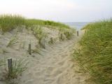 Chemin sur la plage Head of the Meadow Beach, Cape Cod National Seashore, Massachusetts, Etats-Unis Papier Photo par Jerry & Marcy Monkman