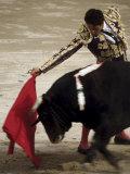 Spanish Bullfighter Camargue France Papier Photo