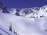 High Angle View of a Ski Slope