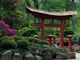 Botanical Gardens  Birmingham  Alabama  USA