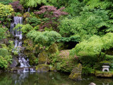 Japanese Gardens Washington Park Portland Oregon  USA