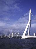 Erasmus Bridge  Rotterdam  Netherlands