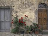 Tuscan Doorway in Castellina in Chianti, Italy Papier Photo par Walter Bibikow