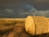 Landscape and Hay Roll in Alberta  Canada