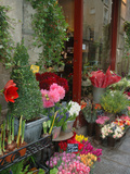 Florist in Ile St Louis  Paris  France