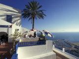 Restaurant Terrace on the Mediterranean Sea  Tunisia