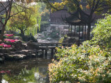 Landscape of Traditional Chinese Garden  Shanghai  China