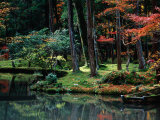 Saiho-Ji Garden in Autumn  Kyoto  Japan