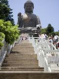 Steps Leading up to Tian Tan Buddha Statue  Hong Kong  China