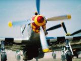 """WWII Aeroplane  """"War Birds"""" Air Show  Oshkosh  USA"""