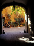Courtyard Plants and Motorcycle  Rome  Italy