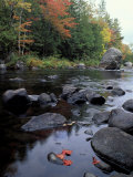 The 100 Mile Wilderness section of the Appalachian Trail  Maine  USA