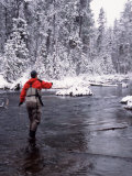 Man Fly Fishing in Fall River  Oregon  USA
