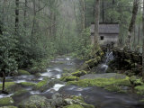 Tub Mill along Roaring Fork  Great Smoky Mountains National Park  Tennessee  USA