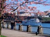 Boat on the Willamette River  Portland  Oregon  USA