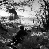 American Soldier Peering Across Snowy Field During Counter Offensive Known as Battle of the Bulge