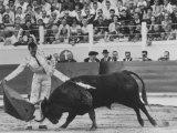 Matador Luis Miguel Dominguin During Bullfight