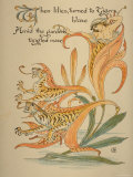 When Lilies  Turned to Tigers  Blaze/Amid Garden's Tangled Maze  Written and Drawn by Walter Crane
