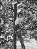 Eartha Kitt Playing in the Tree