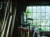 Potting Shed  Inside View of Tools  Apple Tree Cottage  Wales
